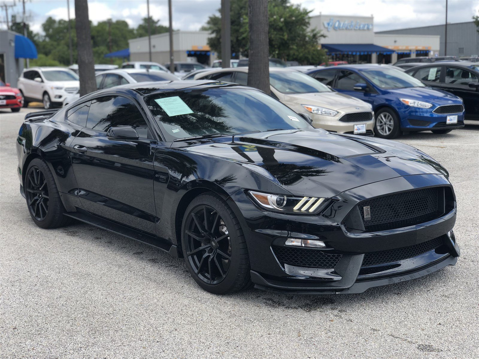 Pre owned 2017 ford mustang shelby gt350