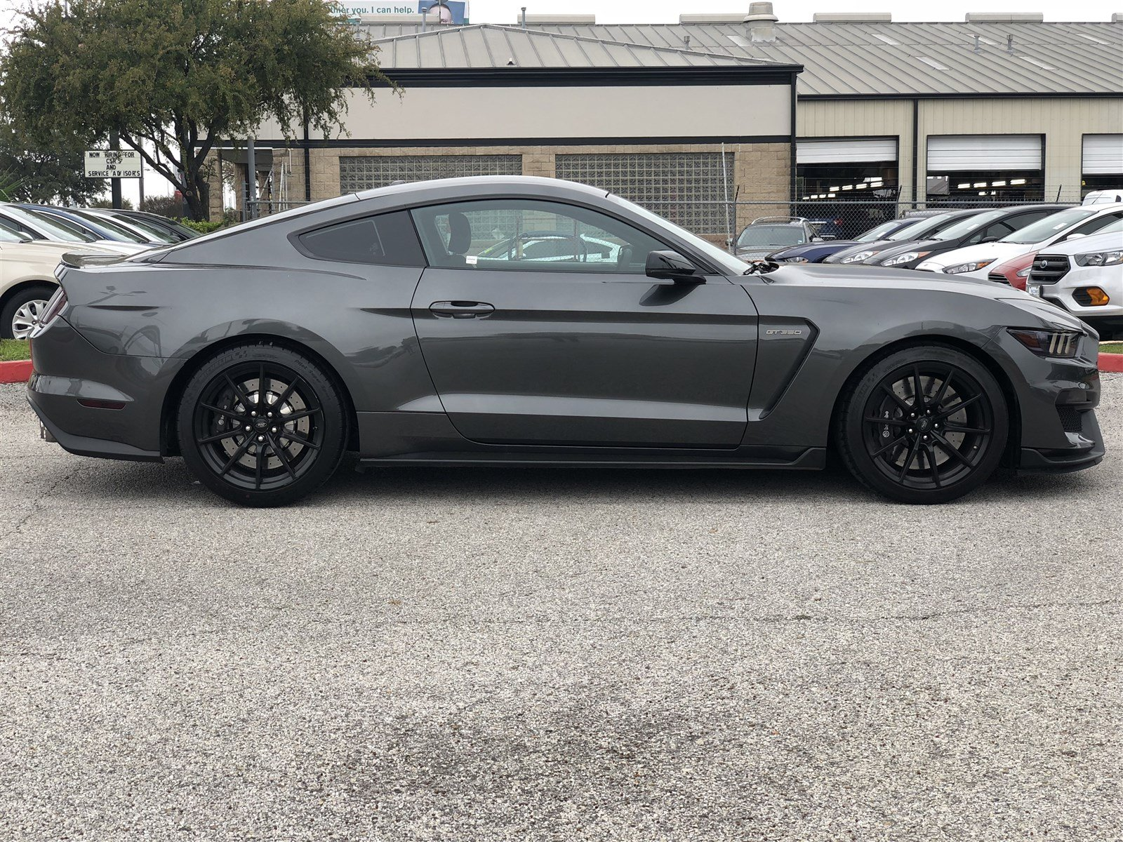 Pre Owned 2016 Ford Mustang Shelby GT350 Coupe in San Antonio